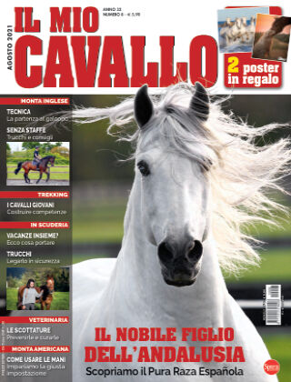 Il Mio Cavallo 08