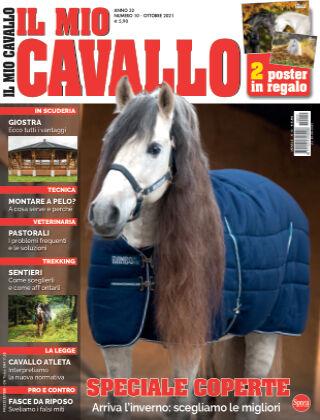 Il Mio Cavallo 10