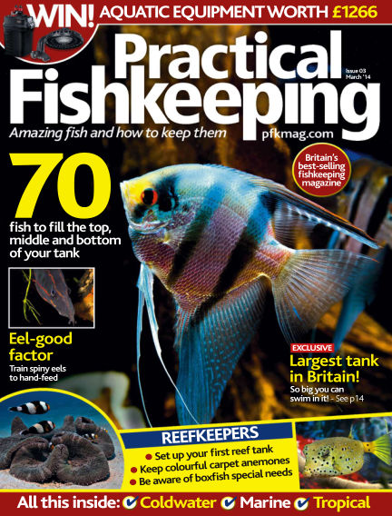 Practical Fishkeeping January 22, 2014 00:00