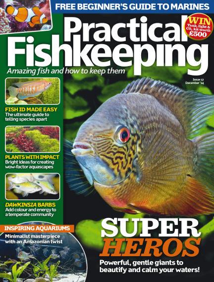 Practical Fishkeeping October 29, 2014 00:00