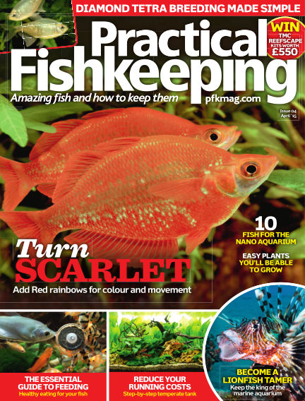 Practical Fishkeeping February 18, 2015 00:00