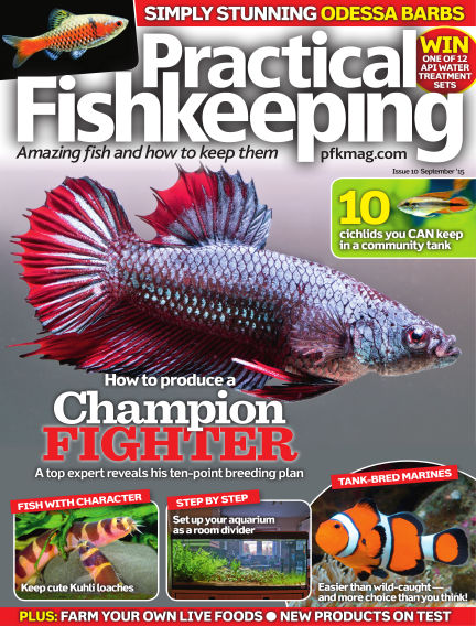 Practical Fishkeeping August 05, 2015 00:00