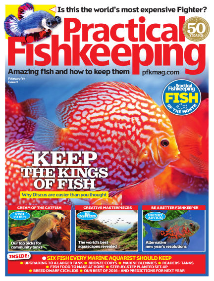 Practical Fishkeeping December 21, 2016 00:00