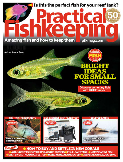 Practical Fishkeeping February 15, 2017 00:00
