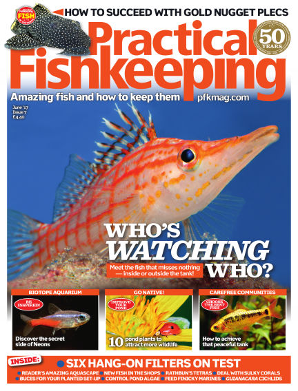 Practical Fishkeeping May 10, 2017 00:00