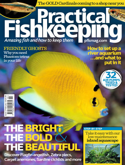 Practical Fishkeeping December 20, 2017 00:00