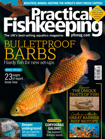 Practical Fishkeeping February 13, 2019 00:00