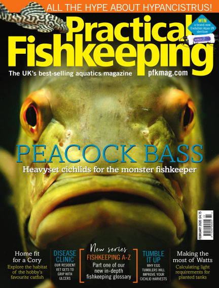 Practical Fishkeeping December 27, 2019 00:00