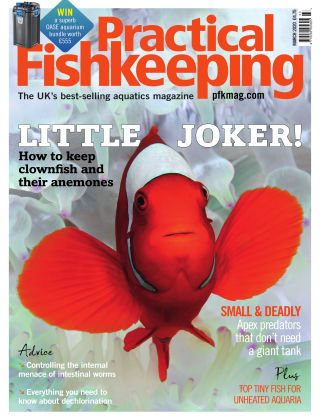 Practical Fishkeeping March 2020