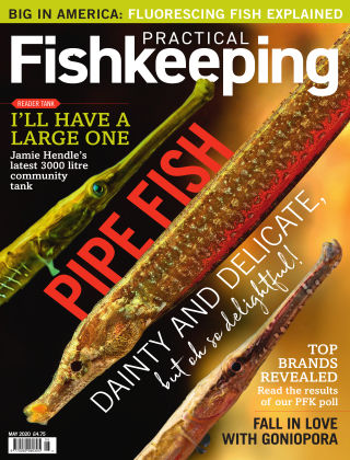 Practical Fishkeeping May 2020