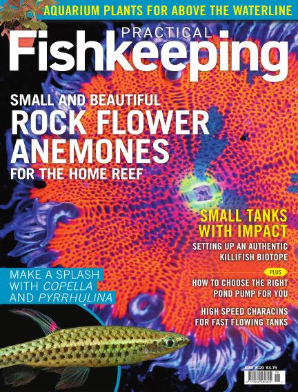 Practical Fishkeeping May 13, 2020 00:00