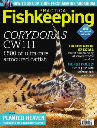 Practical Fishkeeping July 2020