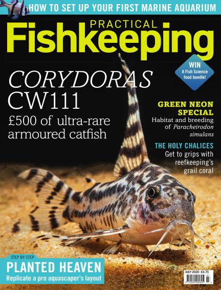 Practical Fishkeeping June 10, 2020 00:00