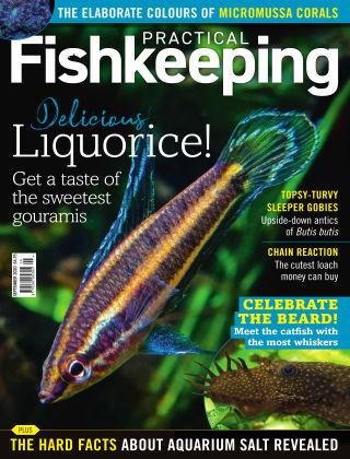 Practical Fishkeeping September 2020