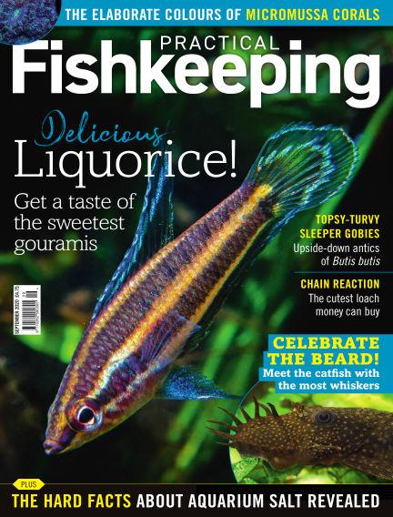 Practical Fishkeeping August 18, 2020 00:00