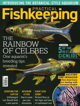 Practical Fishkeeping November 2020