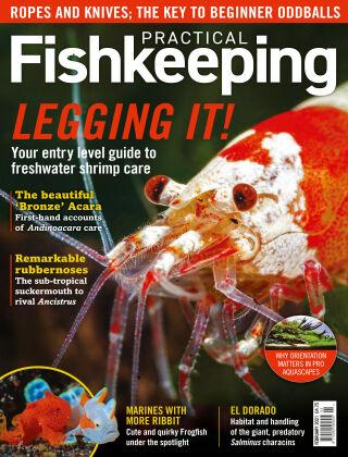 Practical Fishkeeping February 2021