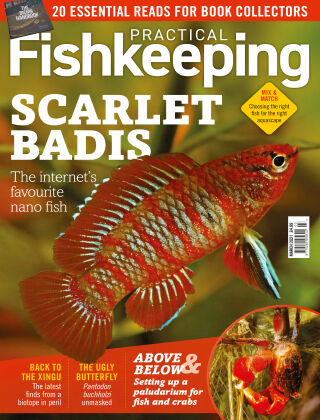 Practical Fishkeeping March 2021