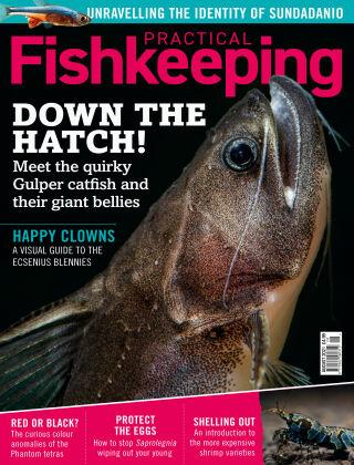 Practical Fishkeeping August 2021