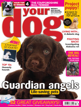 Your Dog Magazine July 2018