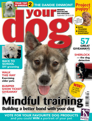 Your Dog Magazine September 2018