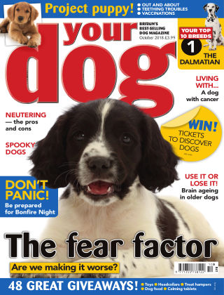 Your Dog Magazine October 2018