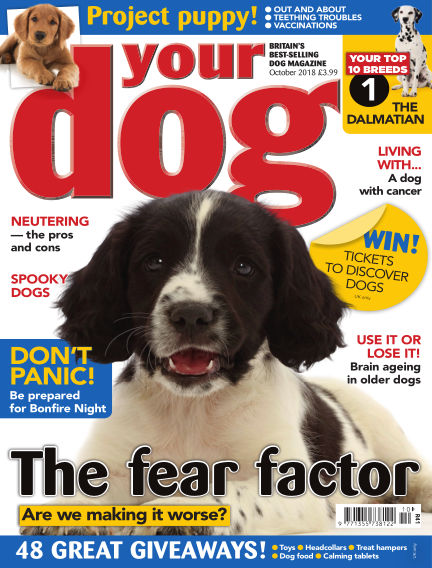 Your Dog Magazine September 07, 2018 00:00