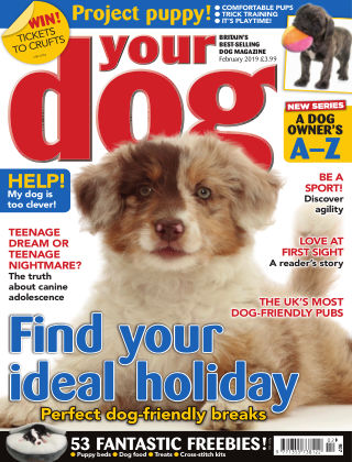 Your Dog Magazine February 2019