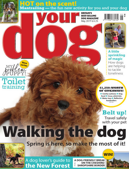 Your Dog Magazine April 08, 2019 00:00