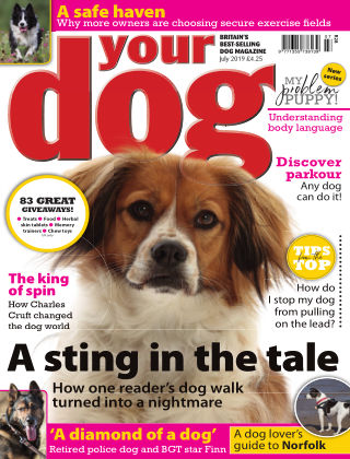 Your Dog Magazine July 2019