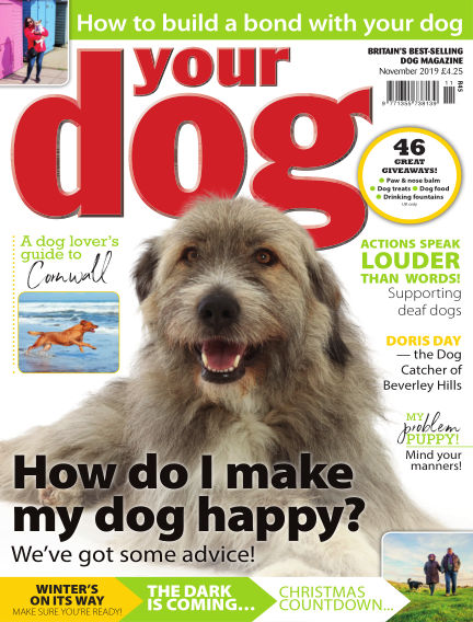 Your Dog Magazine October 08, 2019 00:00