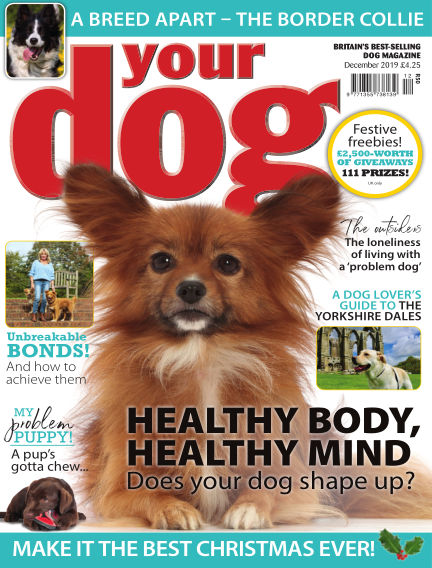 Your Dog Magazine November 07, 2019 00:00