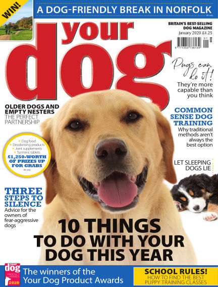 Your Dog Magazine December 07, 2019 00:00