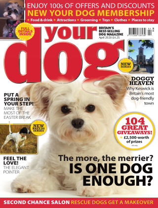 Your Dog Magazine April 2020