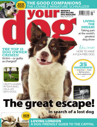 Your Dog Magazine May 2020