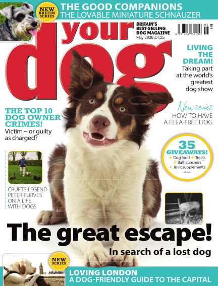 Your Dog Magazine April 07, 2020 00:00