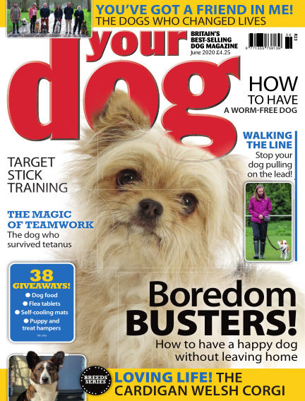 Your Dog Magazine May 07, 2020 00:00