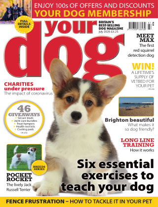 Your Dog Magazine July 2020