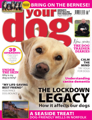 Your Dog Magazine August 2020