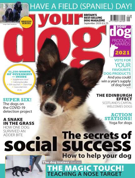 Your Dog Magazine August 07, 2020 00:00