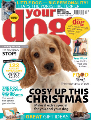 Your Dog Magazine December 2020
