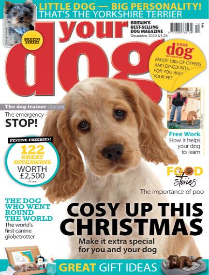 Your Dog Magazine November 06, 2020 00:00