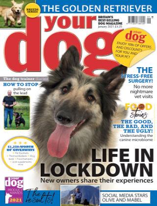 Your Dog Magazine January 2021