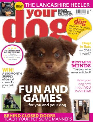 Your Dog Magazine February 2021