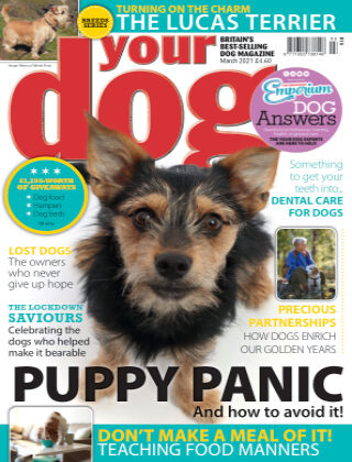 Your Dog Magazine March 2021