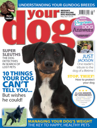 Your Dog Magazine May 2021