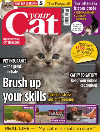 Your Cat Magazine June 2018