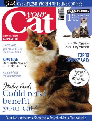 Your Cat Magazine October 2018