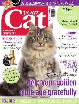 Your Cat Magazine November 2018