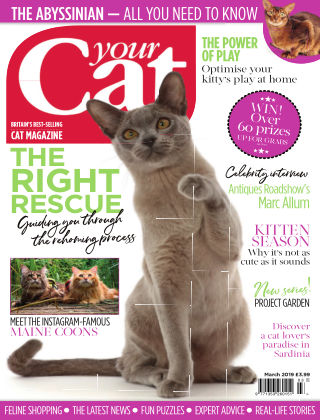 Your Cat Magazine March 2019